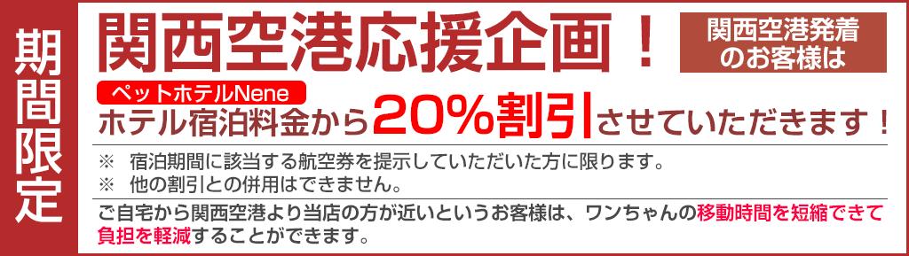 関西空港応援企画