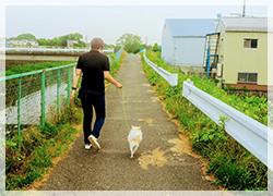 犬の散歩は無料です